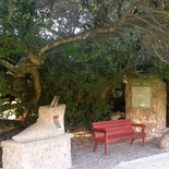 Dias Museum, Mossel Bay - Post Office Tree