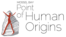 Point of Human Origins